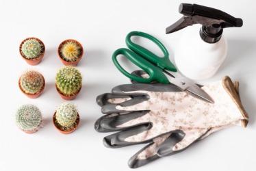 ガーデニング・観葉植物・園芸向けハサミの種類とおすすめ品