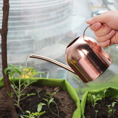 【観葉植物の室内での育て方】ポイント2:水やり