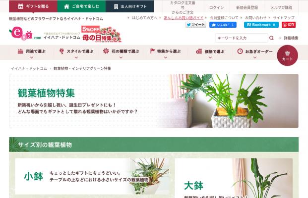 観葉植物のおすすめ人気通販サイトイイハナ・ドットコム(e87.com)