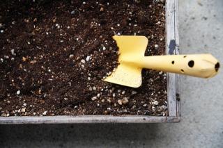 【観葉植物への肥料の与え方4】おすすめの肥料