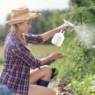【観葉植物の水やりの方法3】必要な道具