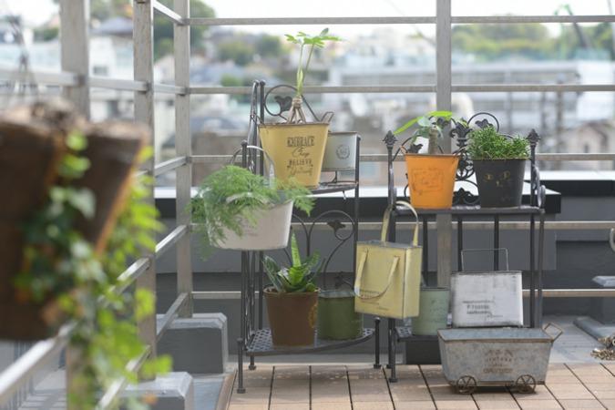 園芸のおすすめ人気通販サイトまとめ!おしゃれ・安い・通販カタログ・園芸用品のサイトが登場
