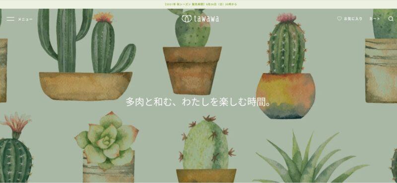 多肉植物専門店 tawawa(多和和 / タワワ)